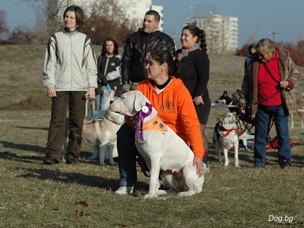 Agility Club Bulgaria 2011